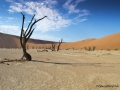 chris-penfold-deadvlei