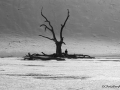 chris-penfold-deadvlei2