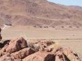 DesertHomesteadOutpost_Exterior_landscape