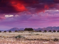 DesertHomesteadLodge_Exterior_Lodge